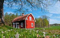 Svenske miniferierTa' på en skøn miniferie og besøg vores svenske naboer.